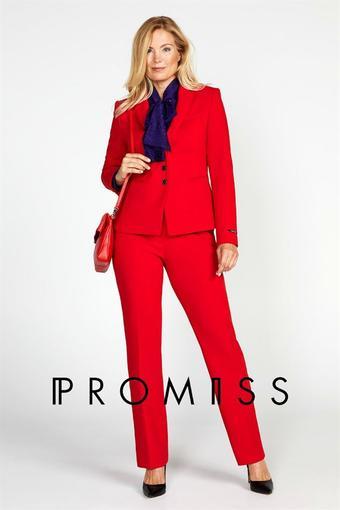Promiss reclame folder (geldig t/m 20-01)