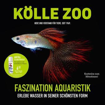 Kölle Zoo Prospekt (bis einschl. 14-03)