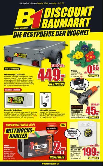 B1 Discount Baumarkt Prospekt (bis einschl. 17-01)