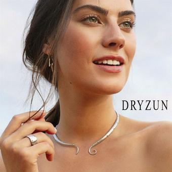 Dryzun catálogo promocional (válido de 10 até 17 02-02)