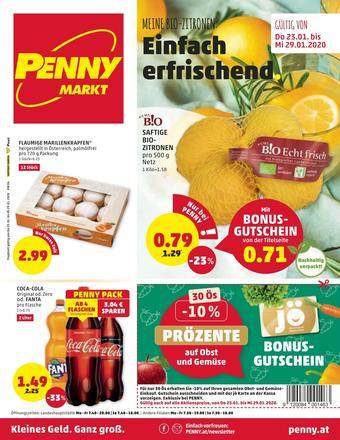 PENNY Werbeflugblatt (bis einschl. 29-01)