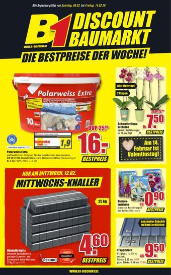 B1 Discount Baumarkt Prospekt (bis einschl. 21-02)