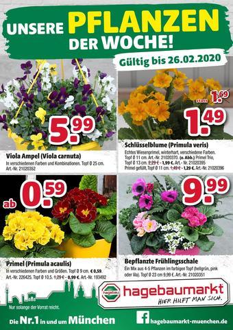 Hagebaumarkt Prospekt (bis einschl. 26-02)