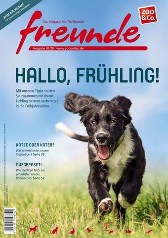 ZOO & Co Werbeflugblatt (bis einschl. 31-03)