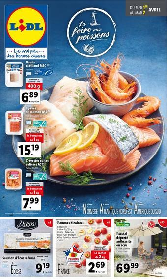 Lidl catalogue publicitaire (valable jusqu'au 07-04)
