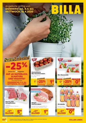 Billa Werbeflugblatt (bis einschl. 15-04)