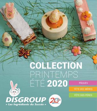 Disgroup catalogue publicitaire (valable jusqu'au 01-09)