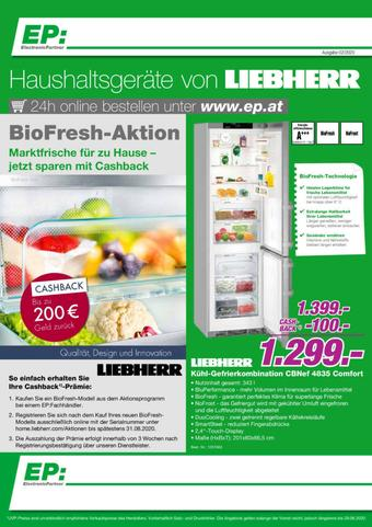 EP Werbeflugblatt (bis einschl. 29-06)
