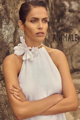 Animale catálogo promocional (válido de 10 até 17 27-07)