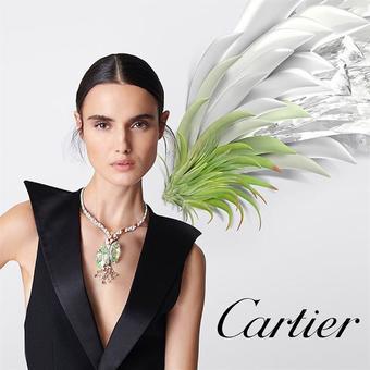 Cartier catalogue publicitaire (valable jusqu'au 01-10)