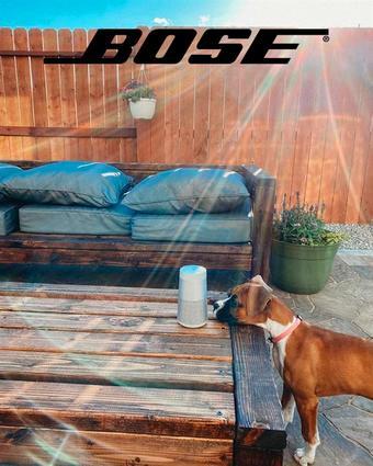 Bose catalogue publicitaire (valable jusqu'au 02-11)