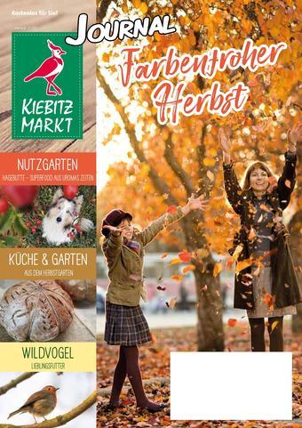 Kiebitzmarkt Prospekt (bis einschl. 22-11)