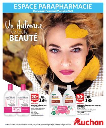 Auchan reclame folder (geldig t/m 27-10)