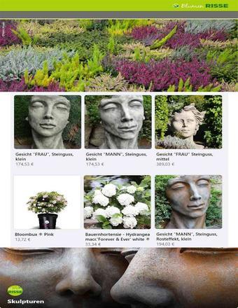 Blumen Risse Prospekt (bis einschl. 31-10)