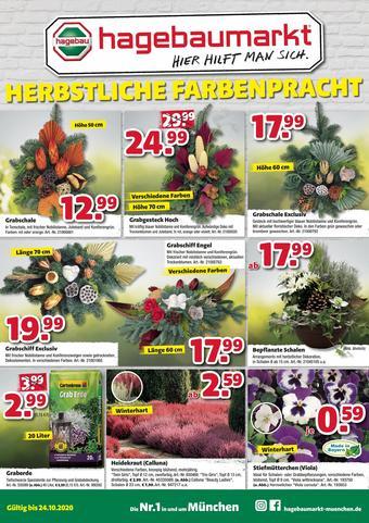 Hagebaumarkt Prospekt (bis einschl. 24-10)