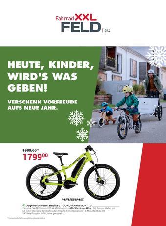 Fahrrad XXL Prospekt (bis einschl. 30-12)