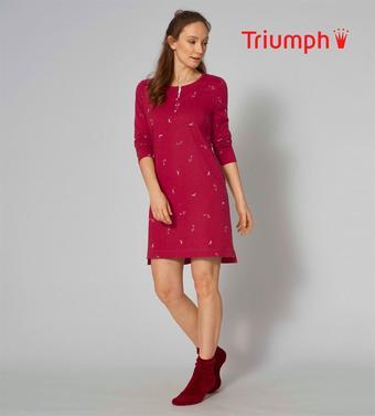 Triumph Prospekt (bis einschl. 22-01)