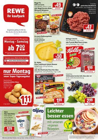 REWE Kaufpark Prospekt (bis einschl. 30-01)