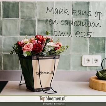 Topbloemen reclame folder (geldig t/m 28-02)