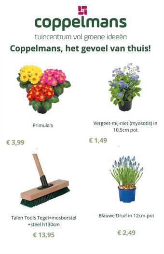 Coppelmans reclame folder (geldig t/m 03-03)