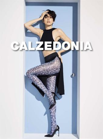 Calzedonia reclame folder (geldig t/m 20-09)