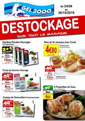 Gel 2000 catalogue publicitaire (valable jusqu'au 26-10)