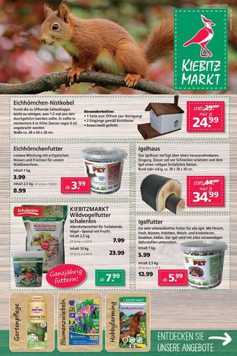 Kiebitzmarkt Prospekt (bis einschl. 31-10)