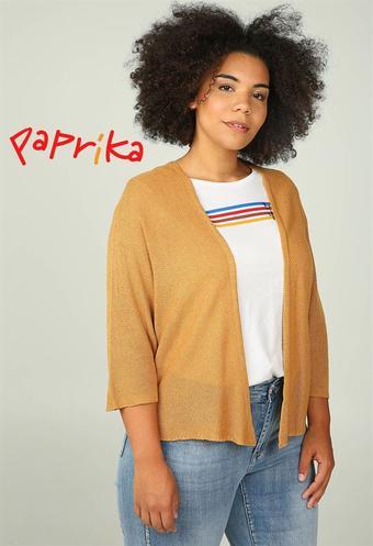 Paprika reclame folder (geldig t/m 07-10)
