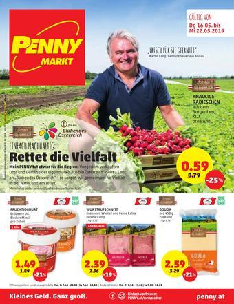 PENNY Werbeflugblatt (bis einschl. 22-05)