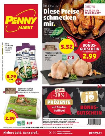 PENNY Werbeflugblatt (bis einschl. 28-08)