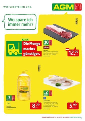AGM Werbeflugblatt (bis einschl. 21-09)