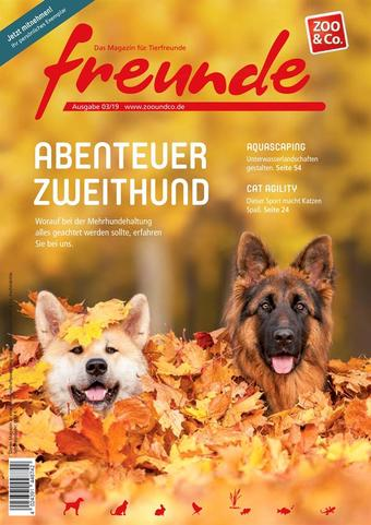 ZOO & Co Werbeflugblatt (bis einschl. 30-11)