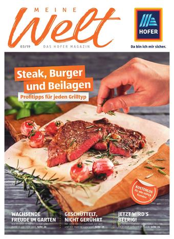 Hofer Werbeflugblatt (bis einschl. 23-06)