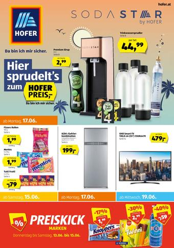 Hofer Werbeflugblatt (bis einschl. 22-06)