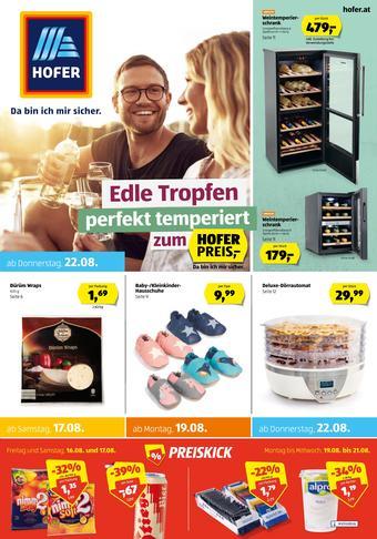 Hofer Werbeflugblatt (bis einschl. 23-08)