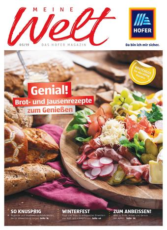 Hofer Werbeflugblatt (bis einschl. 31-10)