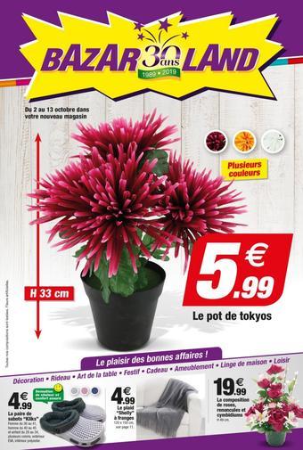 Bazarland catalogue publicitaire (valable jusqu'au 13-10)