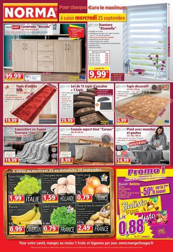 Norma catalogue publicitaire (valable jusqu'au 01-10)