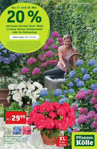 Pflanzen Kölle Prospekt (bis einschl. 22-05)