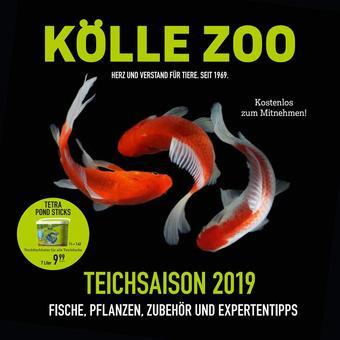 Kölle Zoo Prospekt (bis einschl. 30-06)