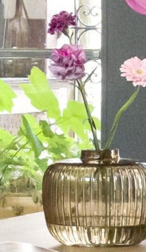 Vaas Iris small
