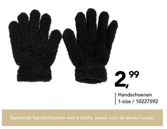 Handschoenen 1-size