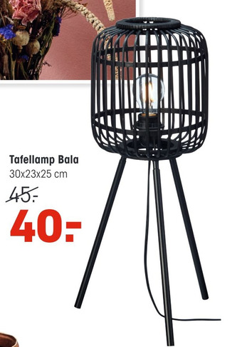 Tafellamp Bala 30x23x25cm