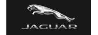 Jaguar flugblätter