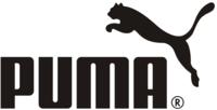 Puma flyers