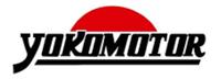 Yoko Motor catálogos