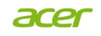 Acer volantini