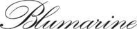 Blumarine volantini