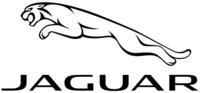 Jaguar volantini