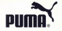 Puma volantini